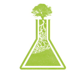 Visionary Organizing Lab logo with a tree growing from a beaker