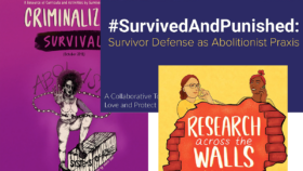 Colorful collage of three different resources from Survived and Punished