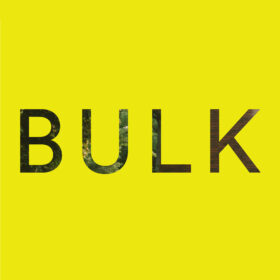 BULK SPACE logo